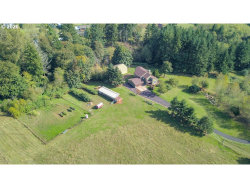 Photo of 21473 SE BORGES RD, Damascus, OR 97089 (MLS # 20143927)