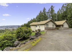 Photo of 77820 SUNSET DR, Cottage Grove, OR 97424 (MLS # 20201887)