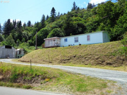 Photo of 52956 STRINGTOWN RD, Myrtle Point, OR 97458 (MLS # 20291541)