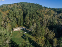 Photo of 22955 HWY 101, Gold Beach, OR 97444 (MLS # 20326821)