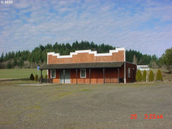 Photo of 29455 SE HALEY RD, Boring, OR 97009 (MLS # 20338769)