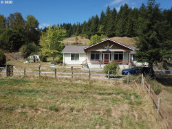 Photo of 52466 OLD BROADBENT RD, Myrtle Point, OR 97458 (MLS # 20394811)