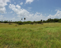 Photo of TBD Bayview Palms, Bayview, TX 78566 (MLS # 91459)