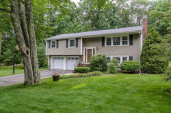 Photo of 39 Flint Locke Ln, Medfield, MA 02052 (MLS # 72524075)