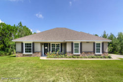 Photo of 3880 Palm Avenue, Mims, FL 32754 (MLS # 789097)