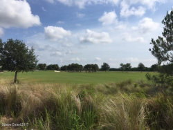 Photo of 2922 Emeldi Lane, Melbourne, FL 32940 (MLS # 791188)
