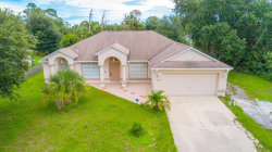 Photo of 2109 SW Gascon Road, Palm Bay, FL 32908 (MLS # 791782)