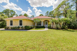 Photo of 8675 130th Avenue, Fellsmere, FL 32948 (MLS # 792077)