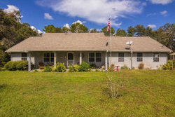 Photo of 3420 Lionel Road, Mims, FL 32754 (MLS # 797474)