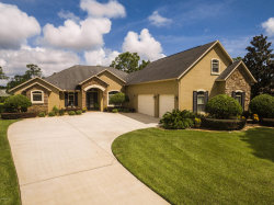 Photo of 3097 Green Turtle Circle, Mims, FL 32754 (MLS # 823892)