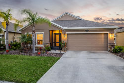 Photo of 252 Teaberry Drive, Palm Bay, FL 32907 (MLS # 842718)