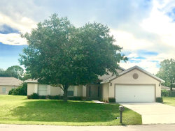 Photo of 564 Audubon Avenue, Palm Bay, FL 32907 (MLS # 848798)