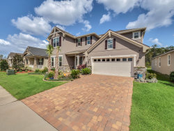 Photo of 8113 Gamemaster Avenue, Orlando, FL 32832 (MLS # 856416)