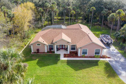 Photo of 5575 Canvasback Drive, Mims, FL 32754 (MLS # 866437)