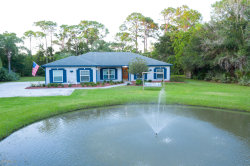 Photo of 4520 Mustang Road, Melbourne, FL 32934 (MLS # 887975)
