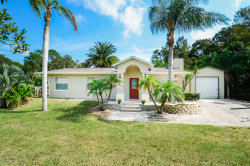 Photo of 249 Flamingo Road, Oak Hill, FL 32759 (MLS # 888064)