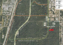 Photo of 0 2nd (paper) Street, Deltona, FL 32725 (MLS # 783275)