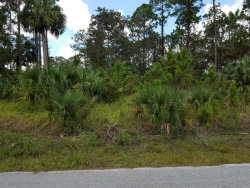 Photo of 1650 SW Gould Avenue, Palm Bay, FL 32908 (MLS # 793724)