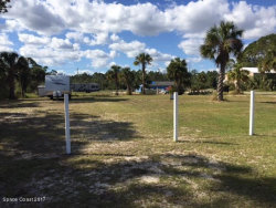 Photo of 0 Canal Road, Edgewater, FL 32141 (MLS # 798662)