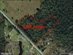 Photo of 21101 Fort Christmas Road, Christmas, FL 32709 (MLS # 798680)