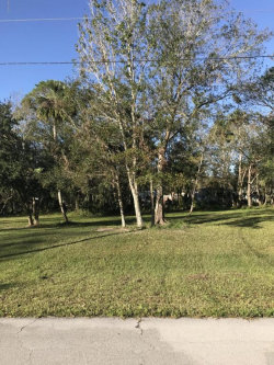 Photo of 2472 Rowland Court, Mims, FL 32754 (MLS # 801049)