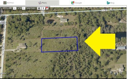 Photo of 00000 No Access Sw Of Matthews&Atz Road, Malabar, FL 32950 (MLS # 805726)
