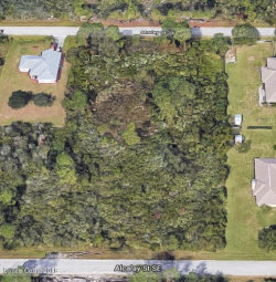 Photo of 1686 Morley Street, Palm Bay, FL 32909 (MLS # 808802)