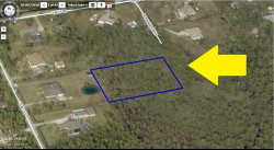 Photo of 00000 Just South Of End Of Hofbauer Way, Grant Valkaria, FL 32950 (MLS # 809702)