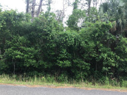 Photo of None Grantline Road, Mims, FL 32754 (MLS # 809939)