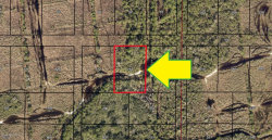 Photo of 00000 No Access East Of Still Hollow Court, Malabar, FL 32950 (MLS # 815172)