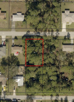 Photo of 602 Black Horse Street, Palm Bay, FL 32909 (MLS # 819688)