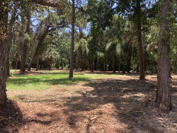 Photo of Xxx West Pine Road, Melbourne Village, FL 32904 (MLS # 846912)