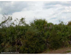 Photo of 00 Vacant Land-Mims, Mims, FL 32754 (MLS # 848305)
