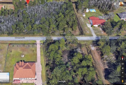 Photo of #31a Moorgate Street, Orlando, FL 32833 (MLS # 852717)