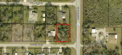 Photo of 1699 Tugwell Street, Palm Bay, FL 32909 (MLS # 858515)