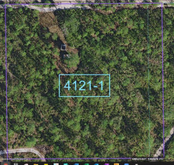 Photo of 0 Holopaw Groves Road, St. Cloud, FL 34771 (MLS # 864523)