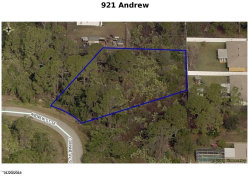 Photo of 921 Andrew Street, Palm Bay, FL 32909 (MLS # 865496)