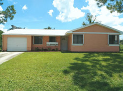 Photo of 850 Talplin Street, Palm Bay, FL 32909 (MLS # 791764)