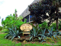 Photo of 1010 Pinetree Drive, Unit 204, Indian Harbour Beach, FL 32937 (MLS # 852797)