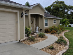 Photo of 3717 Trout Island Place, Melbourne, FL 32934 (MLS # 858638)