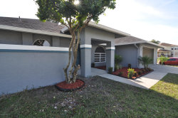 Photo of 26 NW Emerson Drive, Palm Bay, FL 32907 (MLS # 869164)