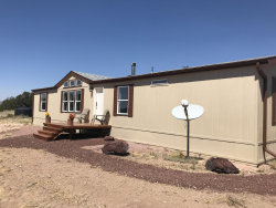 Photo of 25250 W Medicine Man Trail, Seligman, AZ 86337 (MLS # 1024522)