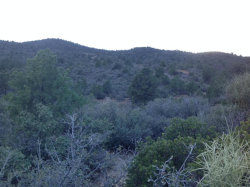 Photo of 00 S Ruger Ranch Road, Kirkland, AZ 86332 (MLS # 1001004)