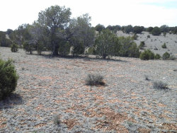 Photo of Lot 766 Westwood Ranch, Ash Fork, AZ 86320 (MLS # 1002034)
