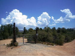 Photo of 0 Flicker Ridge Road, Kirkland, AZ 86332 (MLS # 1003118)