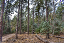 Photo of 0 Tunnel, Prescott, AZ 86303 (MLS # 1008036)