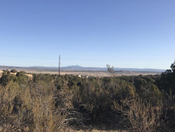 Photo of 1870 W Escondido, Chino Valley, AZ 86323 (MLS # 1009453)