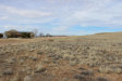 Photo of 555 M A Perkins Trailway, Chino Valley, AZ 86323 (MLS # 1010486)