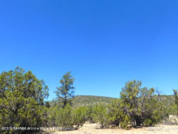 Photo of Lot 563 W Howling Coyote Road, Seligman, AZ 86337 (MLS # 1014620)