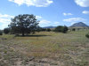 Photo of Lot 47 Juniperwood Ranch Unit 11, Ash Fork, AZ 86320 (MLS # 1015302)